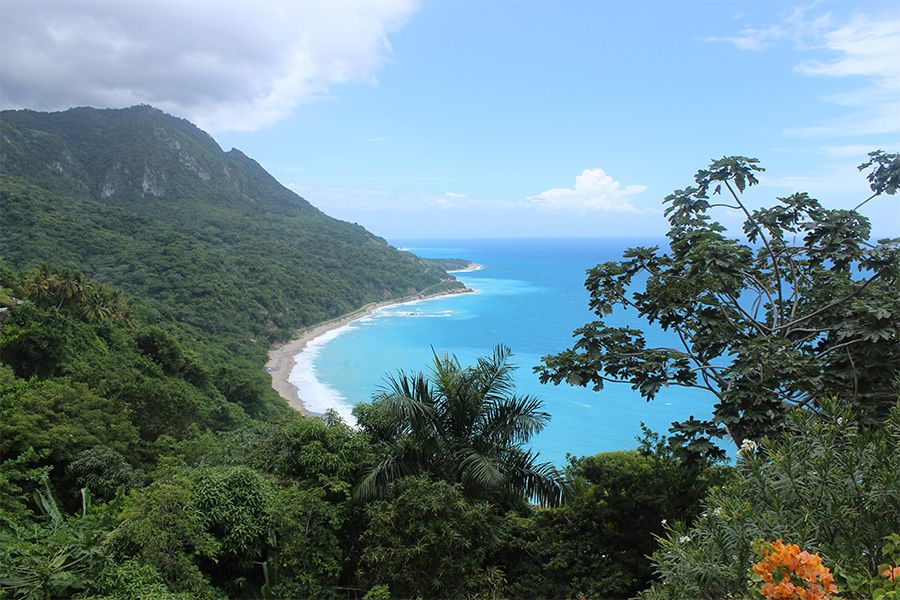 View of the Dominican Republic shore. It is Caribbean jungle, with the blue ocean in the horizon.